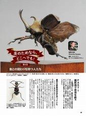 画像8: BE-KUWA No.79 (8)