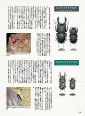 画像7: BE-KUWA No.80 (7)