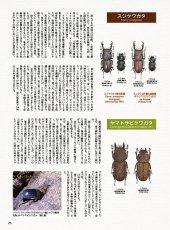 画像8: BE-KUWA No.80 (8)