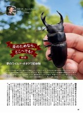 画像12: BE-KUWA No.80 (12)