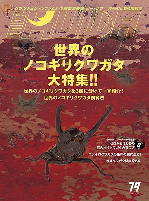 画像1: BE-KUWA No.79 (1)